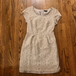 The Limited Grey Lace Dress